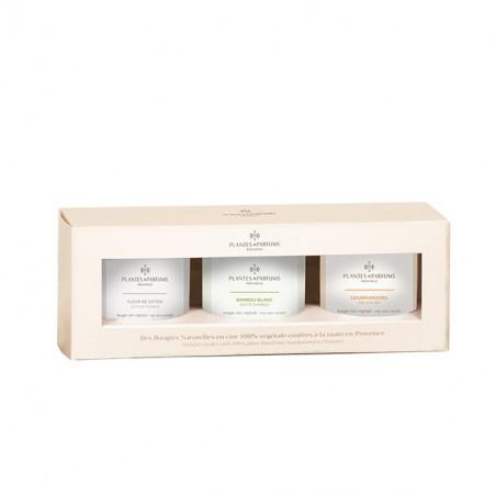 Coffret découverte : trio de bougies végétales parfumées Fleur de Coton, Bambou Blanc, Gourmandises - 75gr