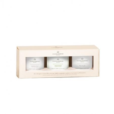 Coffret découverte : trio de bougies végétales parfumées Fleur de Coton, Jardin d'Eden, Rêve de Lin - 75gr